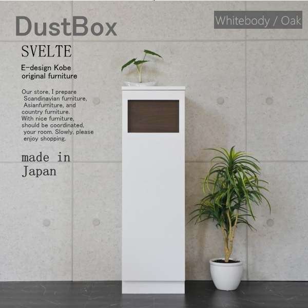 Dustbox svelte whitebody oak n 01