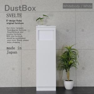 ゴミ箱 おしゃれ スリムゴミ箱 45Lゴミ箱 分別ゴミ箱 キッチンゴミ箱 ダストボックス